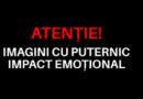 (P) Pe 26 mai, dați PSD ceea ce merită: NIMIC!