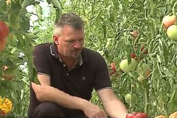 Un preot din Mureş și-a transformat pasiunea pentru agricultură într-o afacere de succes