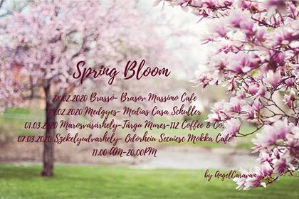 Eveniment all inclusive, marca Spring Bloom by AngelCaravan