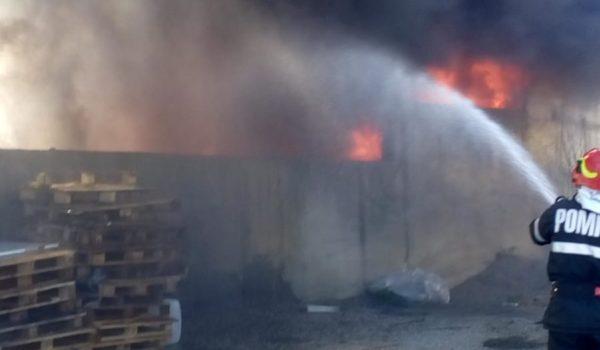 25 de tone de mase plastice au ars la Luduș