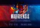"""Congresul International pentru Studenţi, Tineri Doctori şi Farmacişti """"Marisiensis"""" va avea loc online"""