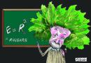 """Concursul Internațional de Caricatură """"RHUBARB Cartoon Contest"""""""